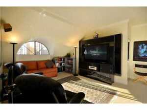 Large Room with private bath, in DT penthouse