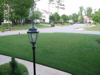"""Bring Your Homes to Life""!  ***Premium Sod Installation*** WOW"