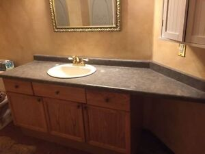 bathroom vanity and glass shower door