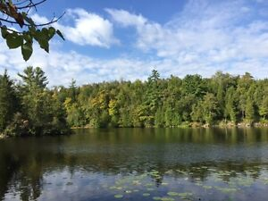 24 Acres, Crowe River, Year Round location