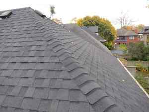 Roofing..Fast Efficient and Affordable 519 817-7663 Windsor Region Ontario image 3