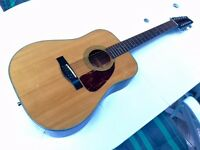12 String Electric / Acoustic Fender Guitar