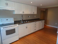 Newly Renovated 1 Bedroom Downtown