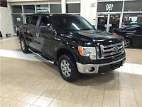 2009 FORD F150 XLT 4X4/BLACK/NO ACCIDENTS*416-451-7455