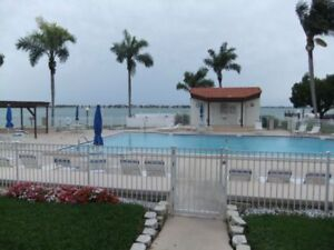 FLORIDA CONDO FOR RENT IN ST.PETERSBURG, FL