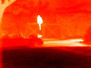 Seek Thermal Compact XR for Android Wärmebildkamera; Nachtsichtgerät - <span itemprop=availableAtOrFrom>Graz, Österreich</span> - Widerrufsrecht Sie haben das Recht, binnen vierzehn Tagen ohne Angabe von Gründen diesen Vertrag zu widerrufen. Die Widerrufsfrist beträgt vierzehn Tage ab dem Tag an dem Sie oder ein von Ihn - Graz, Österreich