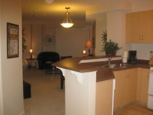 Discovery Pointe - Furnished 1 Bed - Short Term Available - SCR