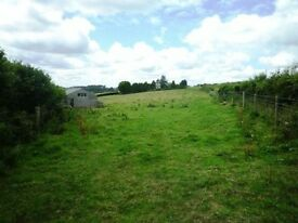 LAND WANTED FOR DOGS, Buckinghamshire/Surrey/Berkshire
