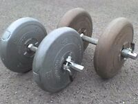 66 lb 30 kg Big Grey Dumbbell & Barbell Weights