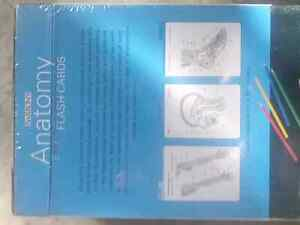 Brand new in sealed plastic Barron's Anatomy flash cards Kitchener / Waterloo Kitchener Area image 2