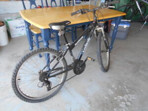 Youth Norco Injector Mountain Bike