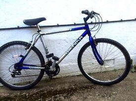 Man's bicycle