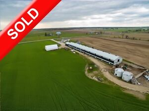 SOLD: Unique Opportunity 2 Purchase Poultry Farm with/wout Quota