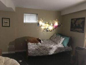 One basement room for rent available September  near Sheridan