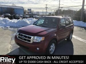 2010 Ford Escape XLT STARTING AT $118.53 BI-WEEKLY