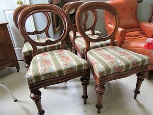 5 Antique Early 1900s or Late 1800s Walnut Balloon Back Chairs