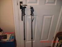EuroHike, anti-shock, adjustable walking poles.