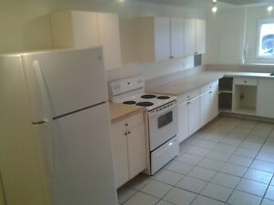 1 Bedroom basement suite available March 1st