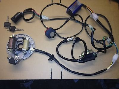 NEW WIRING LOOM / HARNESS ALLOY BLUE RACE CDI STATOR PLATE ELECTRICS PIT BIKE