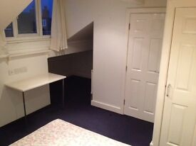LARGE DOUBLE ROOM TO LET