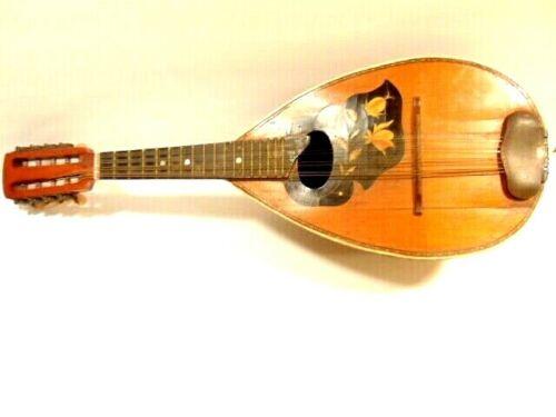 Vintage bowl back mandolin with multi-colored wood