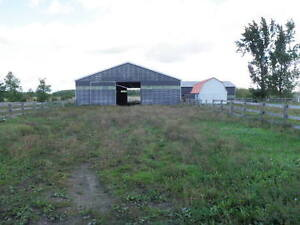 BRUCE TWP- NEW PRICE - 49 ACRE PARCEL WITH EQUESTRAIN ZONING