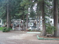RECREATIONAL PROPERTY~TALL TIMBER LEISURE PARK