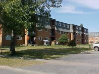 2 Bedroom Zulich Managed Apartment Available  Sept 1st
