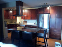 WE GUARANTEE THE LOWEST PRICE FOR YOUR KITCHEN RENOVATION!!
