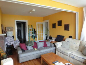 Very large and Beautiful 2 Bedroom Apt, Downtown, July 1st!!