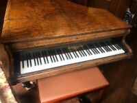Antique Piano - circa 1880 John Broadwood Concert Grand Piano