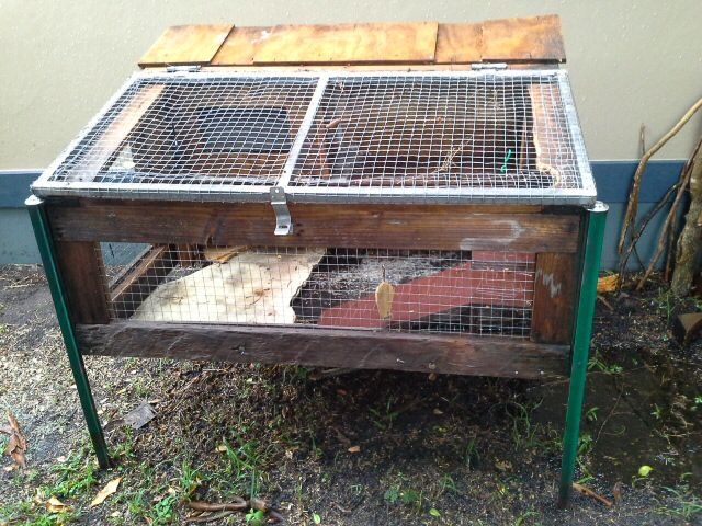 Guinea pig cages for sale brisbane for Small guinea pig cages for sale