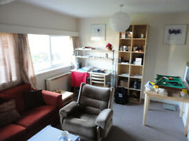 1 bedroom flat in North Fenham. Large. £390 a month