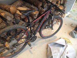 Two new bikes, and bike rack