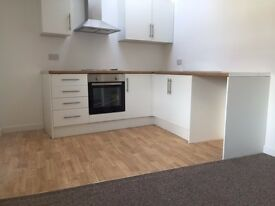 EXCELLENT CONDITION, RECENTLY RENOVATED, 1 BEDROOM FLAT IN BARRY