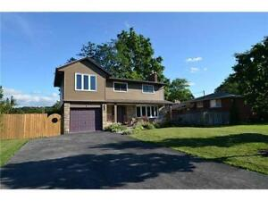 OPEN HOUSE TODAY! - Amazing Upgraded 5 Bed Detached Home!