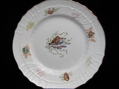 """Richard Ginori - """"Shells"""" Dinner Plate"""