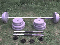 59 lb 27 kg Grey Dumbbell & Barbell Weights - Heathrow
