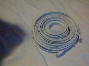 100 ft male to male ethernet cable