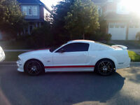 Factory 05-09 Mustang GT wing -Performance white