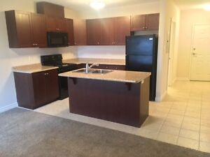 1Bed,1Bath Apartment for rent in Binbrook - $1150/mo -avail.Feb1