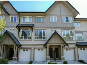 South Surrey Morgan Crossing - 3 Bed 2 Bath Townhouse for Rent