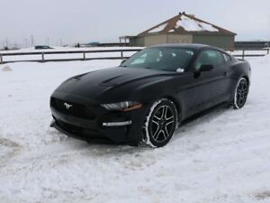2019 Ford Mustang COUPE, 200A, 2.3L ECOBOOST, RWD, SYNC3, NAV, R