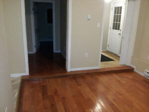 For rent: 2 bdrm above ground apartment in Airport Heights