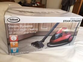 Ewebank steam cleaner