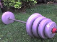 161.7 lb 73.5 kg Grey Dumbbell & Barbell Weights - Heathrow