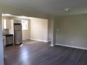 Beautiful, Fully Renovated 2 Bedroom Units- Available November 1 London Ontario image 4