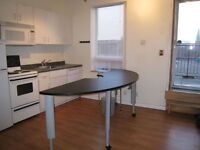 4 bdrm renovated in the heart of junction
