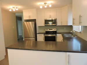 Newly  Renovated 3 Bed Main Floor for Rent