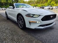 Miniature 10 Voiture Américaine d'occasion Ford Mustang 2019